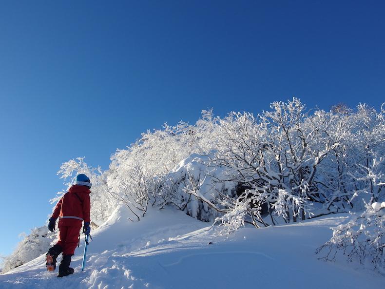 天狗岳〜黒百合ヒュッテ 子供と雪山テント泊(後編)
