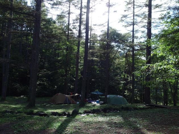 長者の森キャンプフリーサイト
