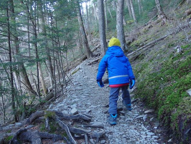 富士見平小屋から瑞牆山へ。歩き出しは岩の多いトレイルが続く